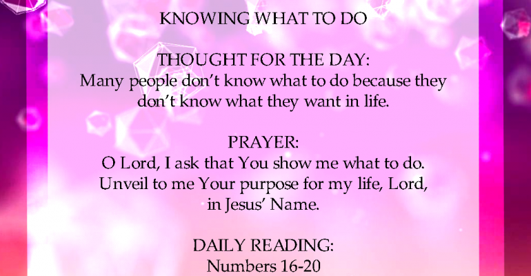 Seeds of Destiny 28th January 2021 Today Devotional - Knowing What To Do